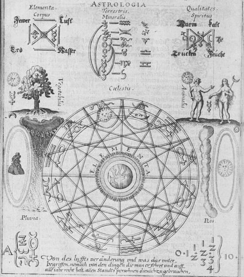 "Illustrations from ""The Hermetic Touchstone"" (Der Hermetische Probierstein) written in 1647 by Oswald Croll.   http://41.media.tumblr.com/0853c6cf57b5403bc521229baaaeaf4d/tumblr_nuznjsuFj81rzppaco1_500.jpg"