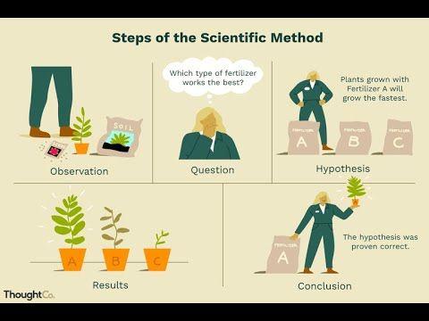 Steps Involved In Scientific Method Em Scientific Method Scientific Method Questions Scientific Method Worksheet