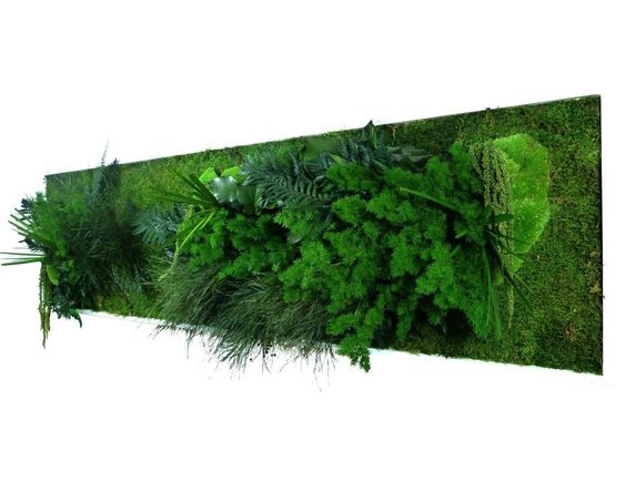http://www.greenrepublic.fr/tableau-vegetal-stabilise-bois-blanc-panoramique-xl.html
