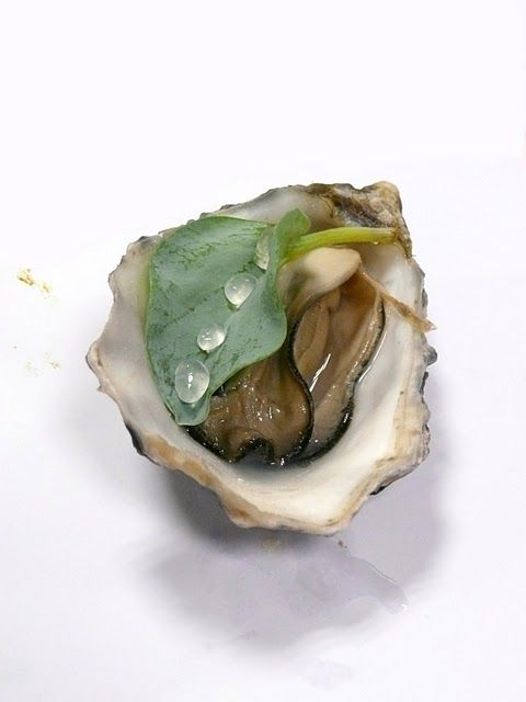 Ultrasound oysters and chefs on pinterest for Avant garde cuisine