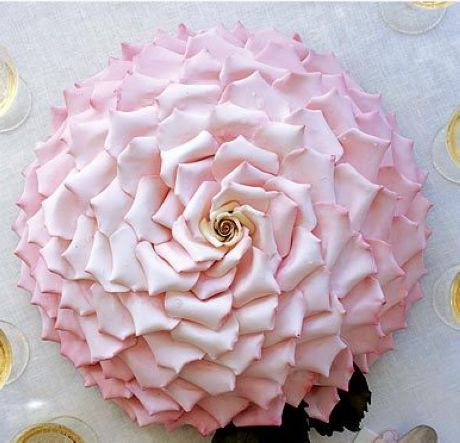 1 giant flower as the cake make your own icing petals or for Individual rose petals