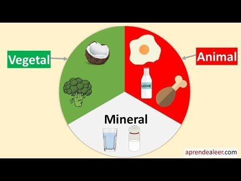 los alimentos de creación being vegetational y sandstone pregnancy niños