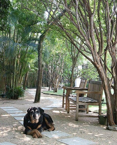 A raça do cachorro determina o tamanho do jardim. Para os de pequeno porte, uma área livre de 10 m² a 15 m² é suficiente. Para os de grande porte, é preciso que o jardim tenha mais de 20 m²