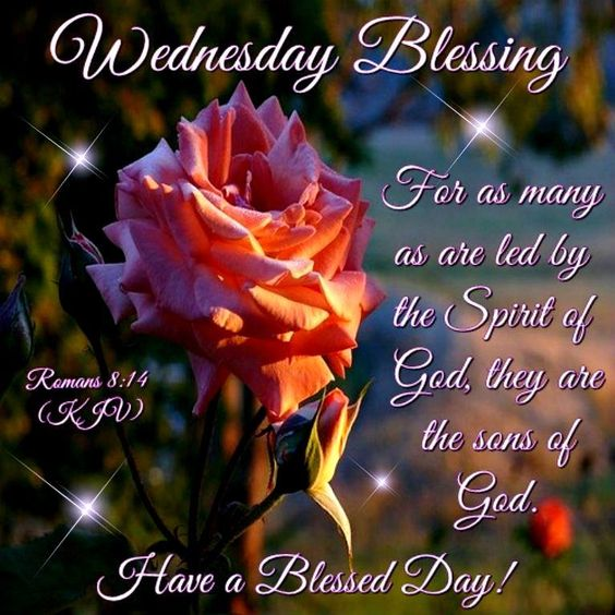 Wednesday Blessings. Romans 8:14- Have a Blessed Day!!