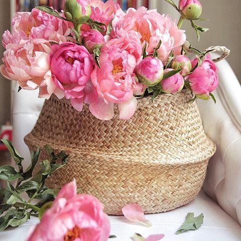 Pin On Fresh Flowers