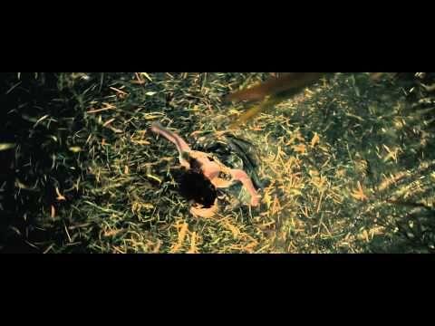 Estreias do cinema 2015 - Caminhos da Floresta