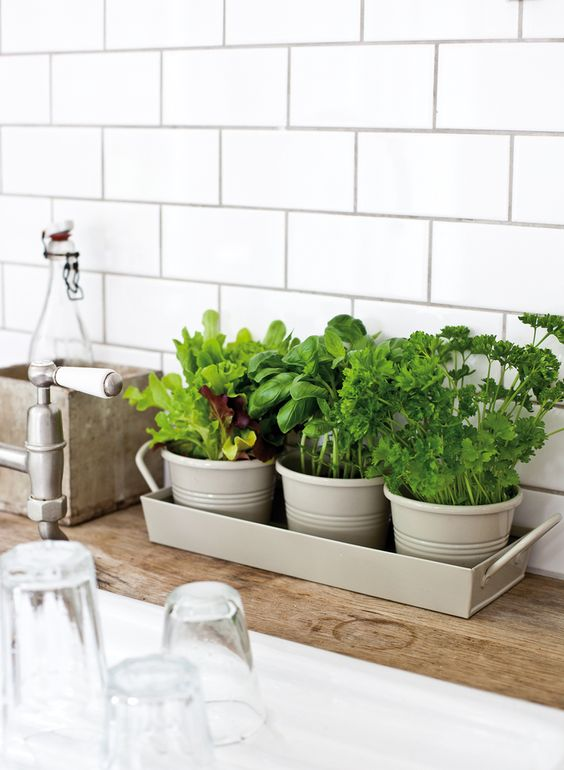 kitchen herb pots | white subway tile