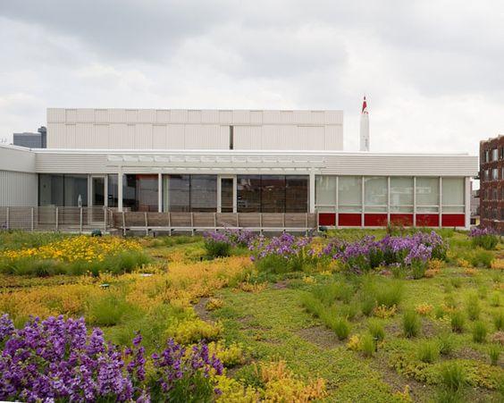 twa4: Building, Studios, Green Roof, Twa4