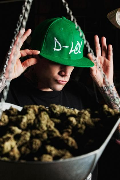 kottonmouth kings 420 | Home Kronicles Tour Newsletter Media