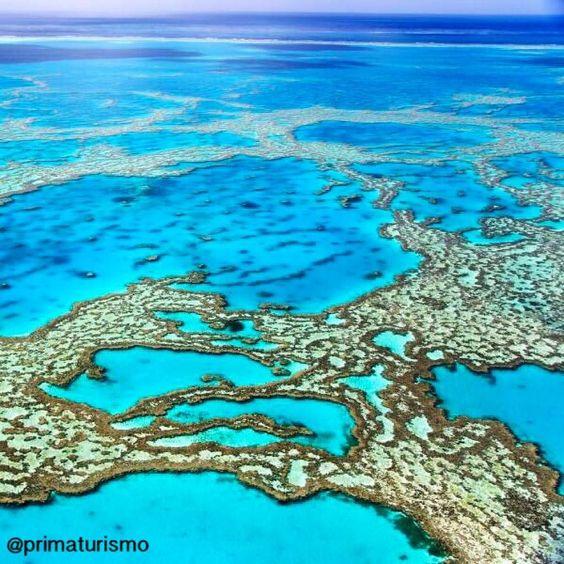 QUEENSLAND (Austrália)  A Grande Barreira de Corais australiana (great barrier reef) é uma imensa faixa de corais composta por cerca de 2900 recifes 600 ilhas continentais e 300 atóis de coral situada entre as praias do nordeste da Austrália e Papua-Nova Guiné. São quase 3.000 quilômetros de comprimento. É um importante destino turístico especialmente nas regiões das ilhas de Whitsunday e da cidade de Cairns. Monte sua viagem para Austrália com a gente. #primaturismo #australia #vamosviajar…