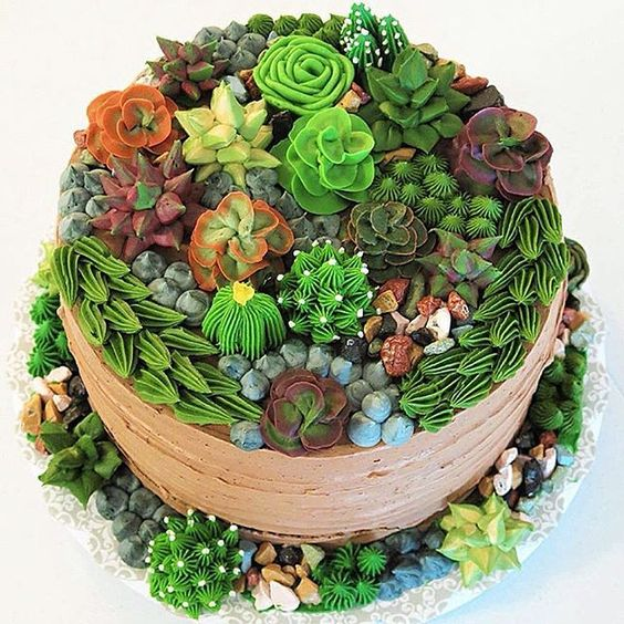 I can't quite believe some of these are icing - succulent and cacti cake