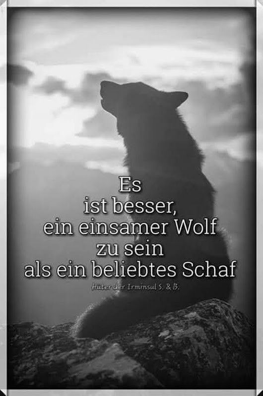 einsamer wolf zitate