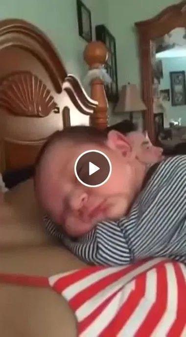 Bebê sorri apôs ser beijado por mãe.