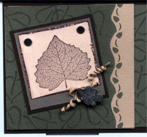 sc59 leaf