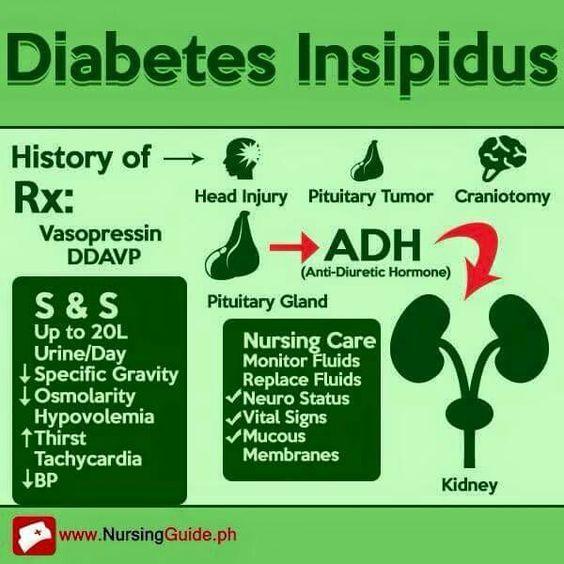 Diabetes Insipidus Medschool Doctor Medicalstudent Medicalschool Resources Step1 Study Inspirati Nurse Endocrine System Nursing Nursing School Survival