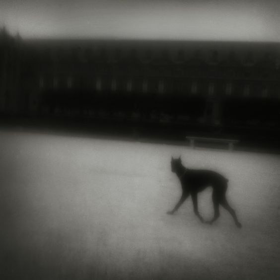 PARIS. Matt Mahurin