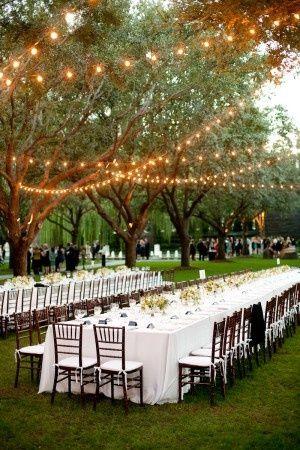 Outdoor wedding in parklike setting with lights in trees. Romantic Wedding Lighting Ideas #weddinginspiration