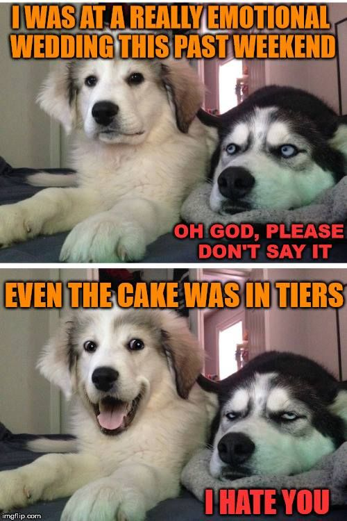 Even The Cake Was In Tiers Funny Dog Jokes Funny Animal