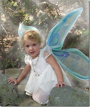 Make your own Fairy Wings. DIY.