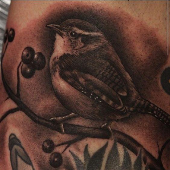Wren tattoo   T...