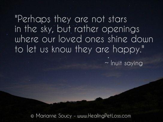 healing pet loss quotes