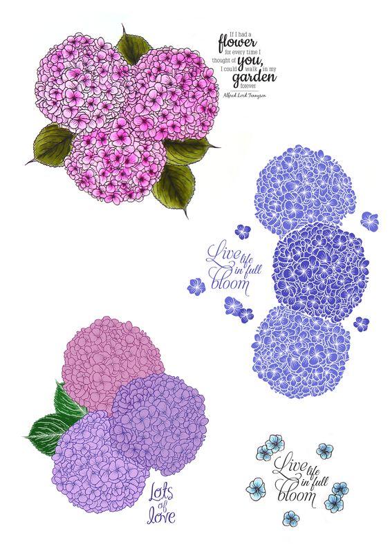 FTLS142 - Flowering Hydrangea