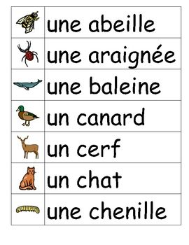 Animaux, Vocabulary word walls and Vocabulary words on ...