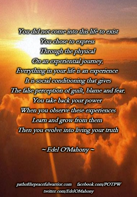 You did not come into this life to exist  You chose to express   Through the physical   On an experiential journey.  Everything in your life is an experience   It is social conditioning that gives  The false perception of guilt, blame and fear.  You take back your power   When you observe these experiences  Learn and grow from them   Then you evolve into living your truth  © Edel O'Mahony