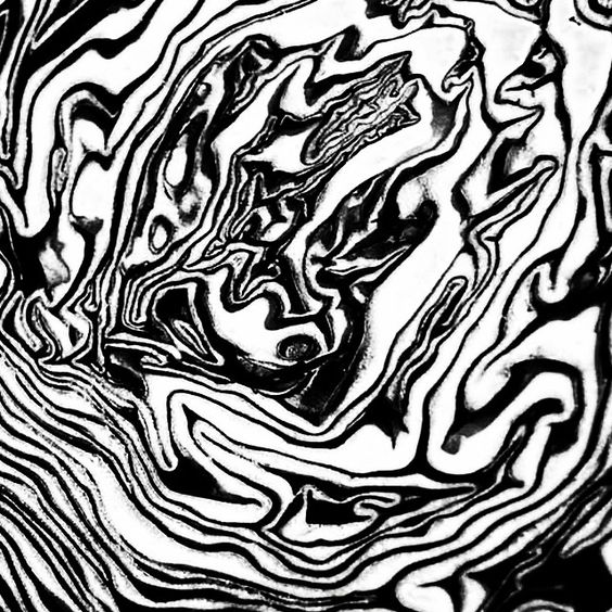 Black and white pattern. Modern abstract art. Cabbage print.   Art ...