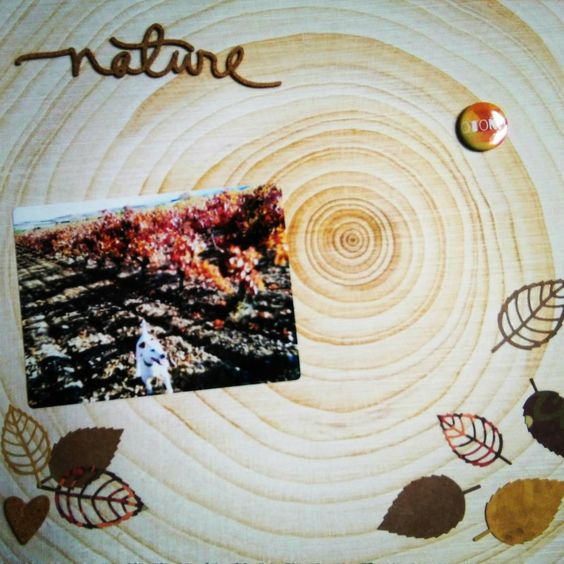 Layout otoño