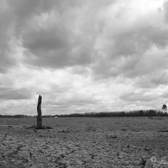 #Drought,  #fnq #mareeba #dry #australia #ruralaustralia