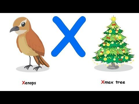 Image result for kids word starting with x | Kids learning ...