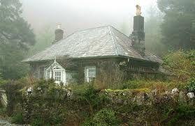 Wales cottage next to the Ffestiniog railway by Brian Negus.