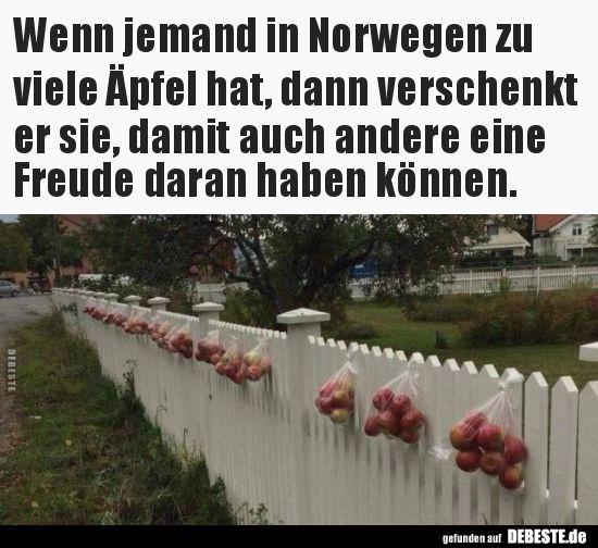 Wenn Jemand In Norwegen Zu Viele Apfel Hat Dann Verschenkt Lustige Bilder Spruche W Lustige Zitate Und Spruche Weisheiten Spruche Witzige Bilder Spruche