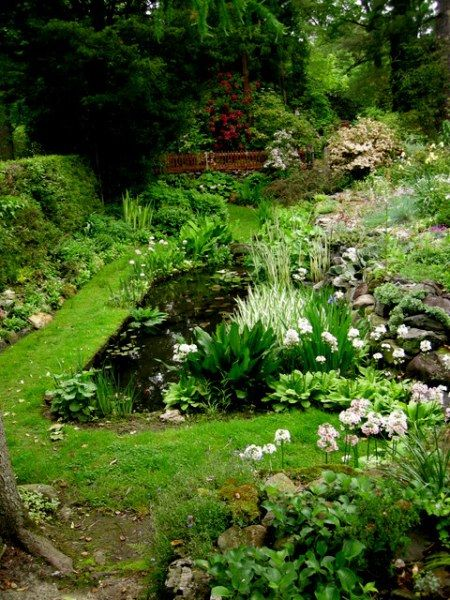 The pond garden was breath-taking.
