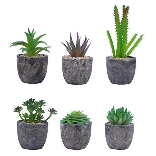 Belle Vous Plante Artificielle Lot De 6 Mini Fausse Plante Succulente Avec Pots Petite Plante Deco En 2020 Petites Plantes En Pot Decoration Plante Fausse Plante
