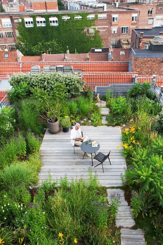 Un Jardin Sur Le Toit Bruxelles With Images Roof Garden