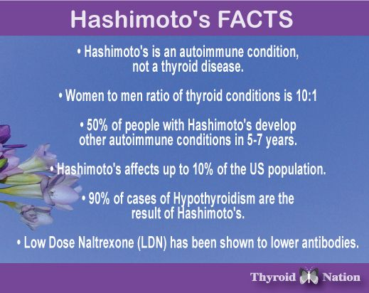 Essay about hashimotos disease