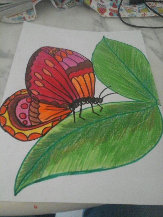 borboleta a lapis