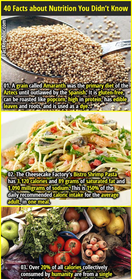 40 Interesting Nutrition Facts You Have To Know Fact Republic Nutrition Food Facts Nutrition Recipes