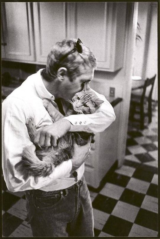 Oh my gosh!!!! This is the most adorable thing I have ever seen! Martin Freeman hugging and kissing a kitty! <3 <3 The sheer cuteness is almost unbearable!!