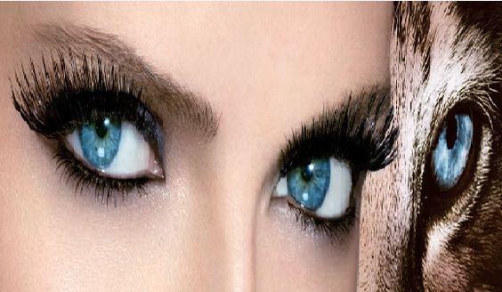 Mis ojos!