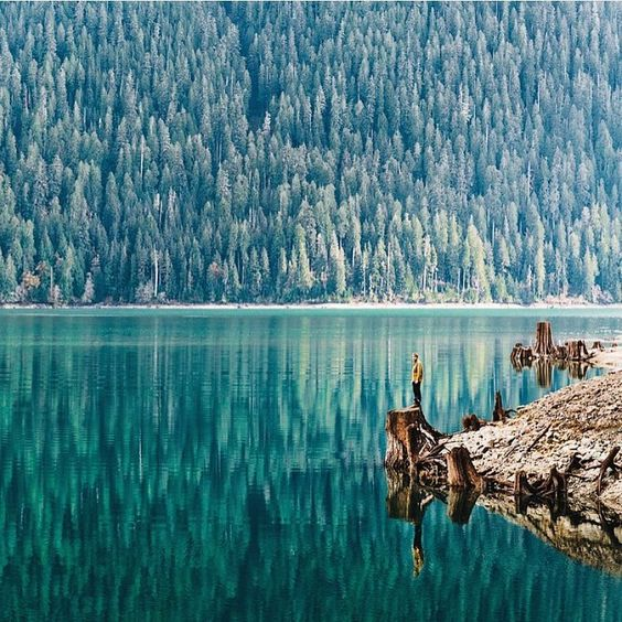 "Wilderness Culture on Instagram: ""Reflections at Baker Lake, Washington Photo: @finn #wildernessculture"""