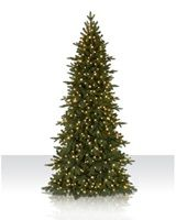 This is going to be my new Christmas tree for the family room.