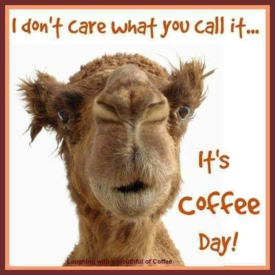 Funny Hump Day Coffee Quote Good Morning Wednesday Hump Day