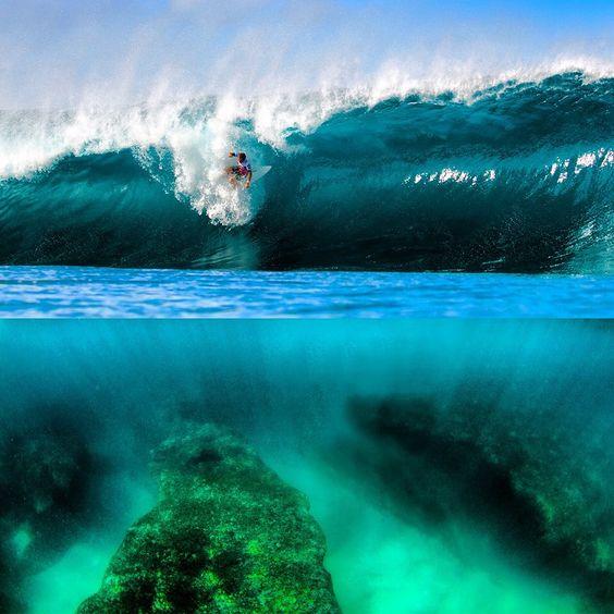 Surf corais
