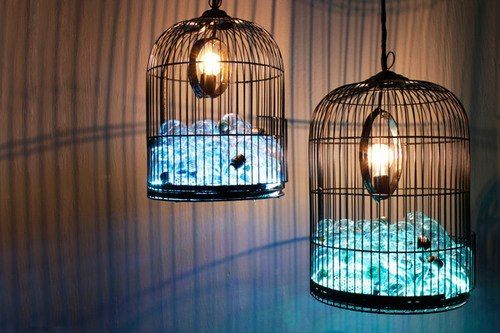 Caged Ideas