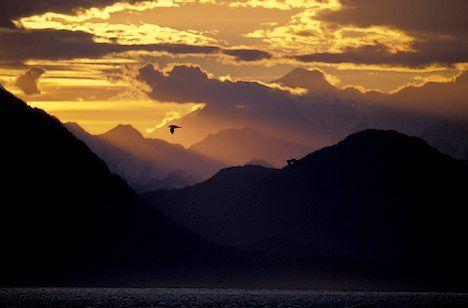 Google Image Result for http://www.alaska-in-pictures.com/data/media/13/sun-sets-on-glacier-bay_5401.jpg
