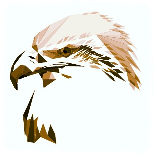 eagle and more eagle bird eagles drawings of eagle drawing drawings ...