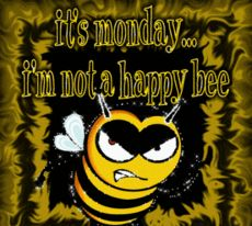 its monday im not a happy bee